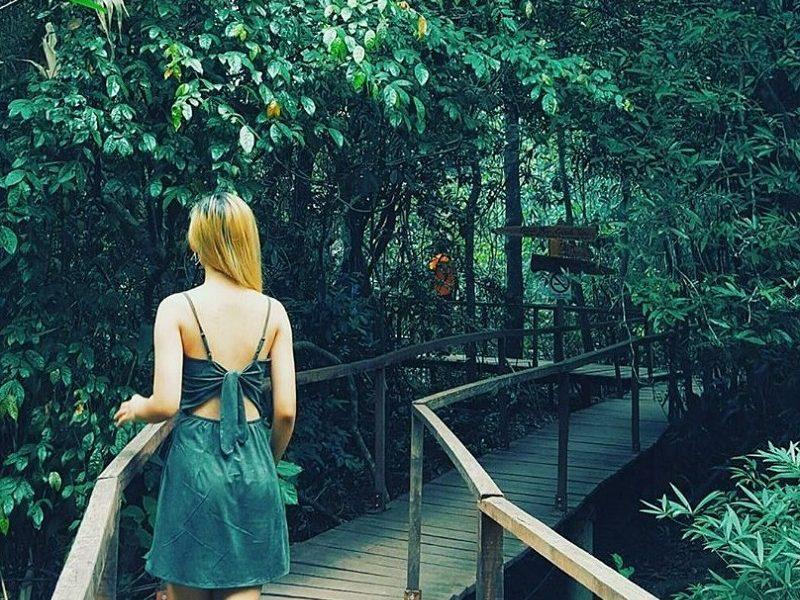 Quảng Bình điểm đến du lịch suối nước Moọc Phong Nha tour 3