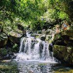 Tour Quảng Bình du lịch vườn thực vật, thác Gió Phong Nha 2