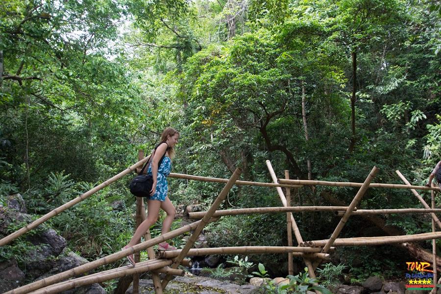 Vườn thực vật Phong Nha - Kẻ Bàng tour du lịch Quảng Bình 2